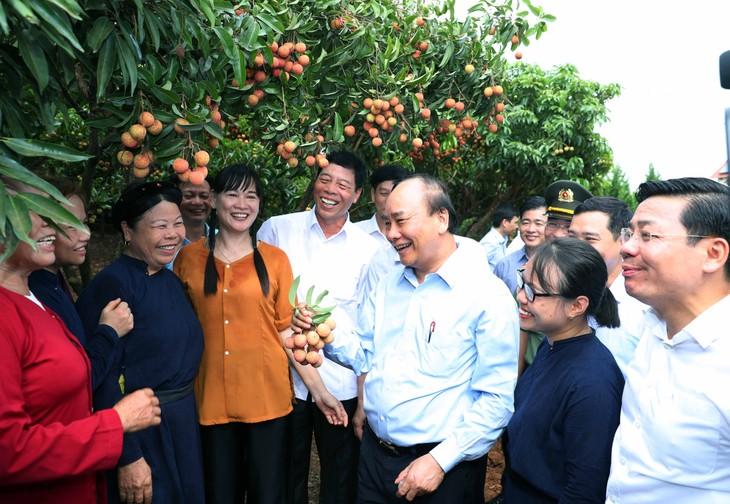 Premierminister Nguyen Xuan Phuc ist zu Gast beim Export von Litschi - ảnh 1