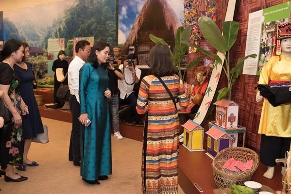 """Ausstellung """"Familie in der traditionellen Kultur der verschiedenen Volksgruppen Vietnams"""" - ảnh 1"""
