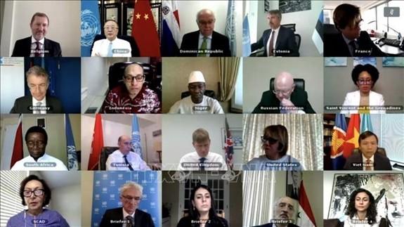Vietnam und Weltsicherheitsrat: Vietnam ruft Weltgemeinschaft auf, Syrien bei Bekämpfung der COVID-19-Pandemie zu helfen - ảnh 1