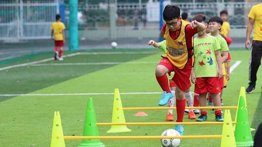 Umsetzung der Vereinbarungen zwischen FIFA und ASEAN über Fußballentwicklung - ảnh 1