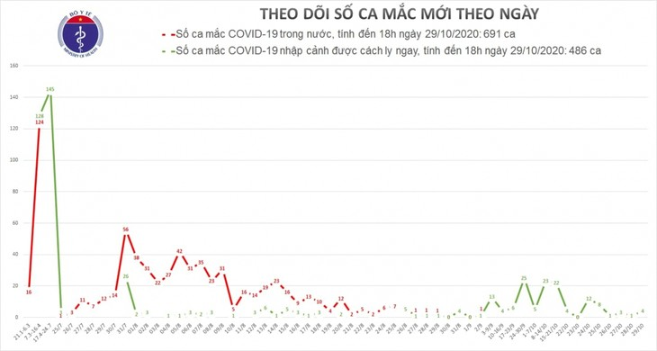 Vier Fluggäste aus Frankreich nach Vietnam mit COVID-19 infiziert - ảnh 1