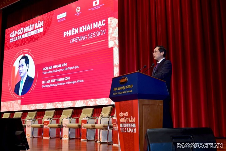 Verbesserung der Zusammenarbeit zwischen Vietnam und Japan - ảnh 1