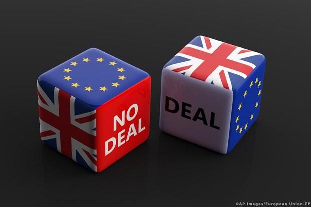 Großbritannien und Deutschland sind optimistisch über Handelsvereinbarungen nach Brexit - ảnh 1