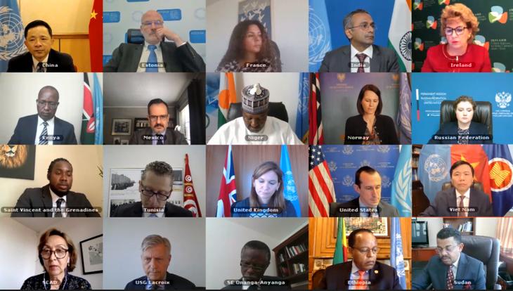 Vietnam appelliert für friedliche Maßnahmen zur Lösung der Probleme in Abyei - ảnh 1