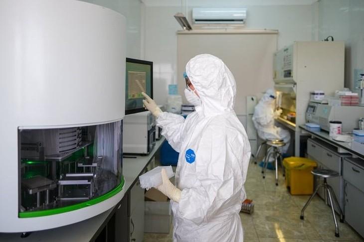 Vietnam hat am Donnerstag 515 neue COVID-19-Infizierte - ảnh 1