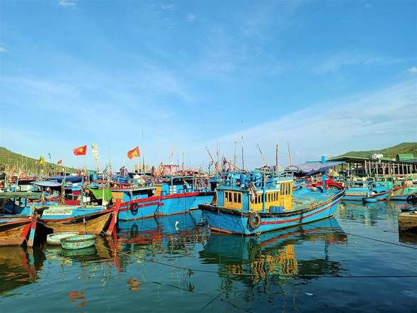 Größter Fischereihafen in Zentralvietnam ist wieder in Betrieb - ảnh 1