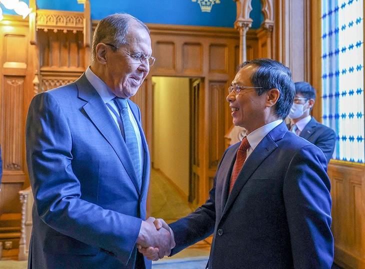 Effiziente Förderung der strategischen und umfassenden Partnerschaft zwischen Vietnam und Russland - ảnh 1