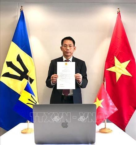 Vietnam und Barbados haben potentielle Zusammenarbeit - ảnh 1