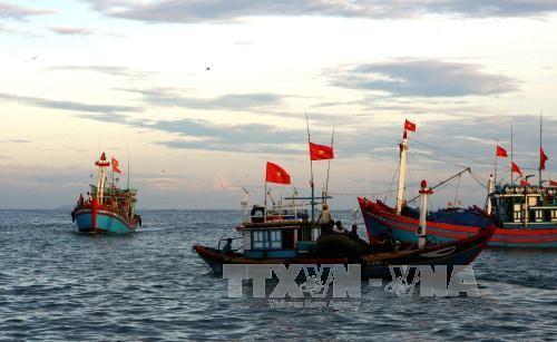 Quang Nam celebrará su VI Festival de Patrimonio en junio - ảnh 1