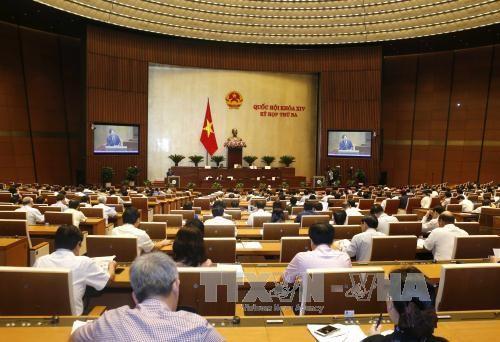 Parlamentarios vietnamitas abordan por endurecer la ley de utilización de armas - ảnh 1