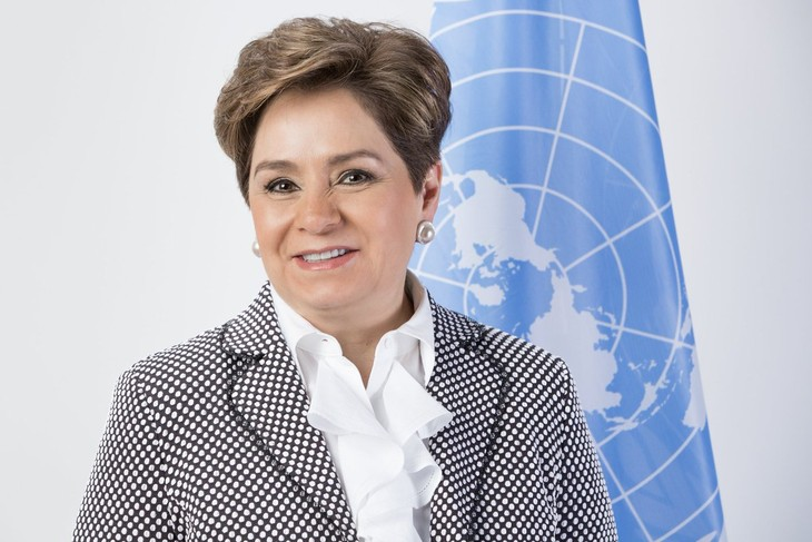 Funcionaria de la ONU llama a unir esfuerzos para enfrentar la crisis climática - ảnh 1