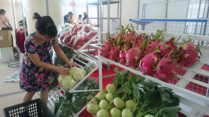 Tratado de Libre Comercio con la UE, buena oportunidad para agricultura vietnamita - ảnh 1