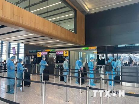 Repatrían a más de 240 vietnamitas desde Filipinas  - ảnh 1