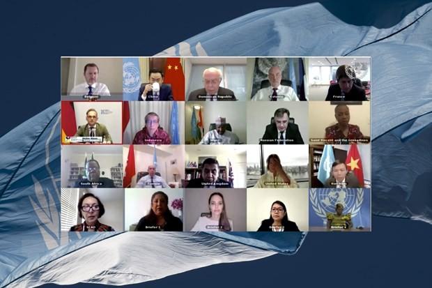 Vietnam llama a la comunidad internacional a ayudar a Palestina en tiempo difícil - ảnh 1