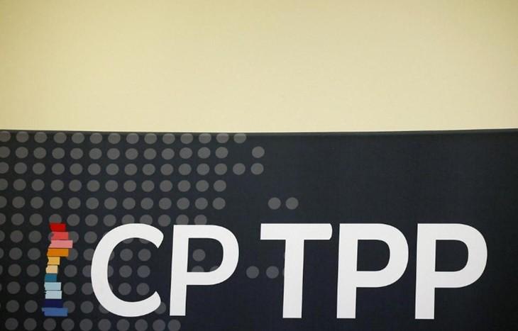 Firmantes del CPTPP coinciden en promover la economía digital en medio del covid-19 - ảnh 1