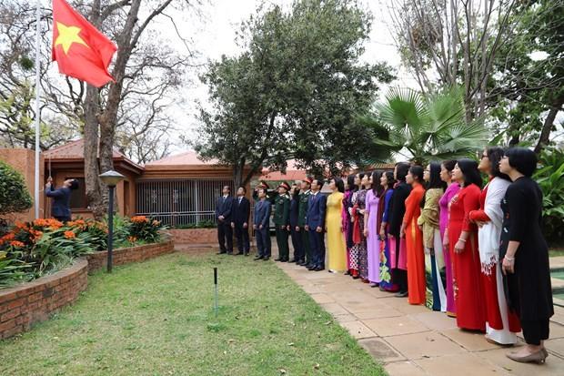 Medios sudafricanos valoran la política exterior de Vietnam y sus logros - ảnh 1
