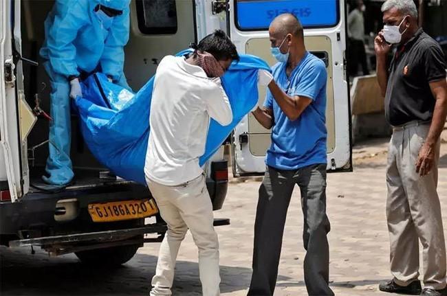 El mundo registra más de 29,4 millones de casos del covid-19 - ảnh 1