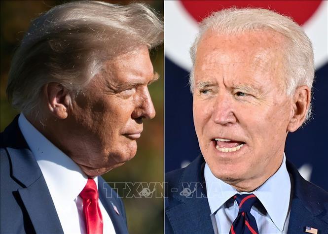 Elecciones estadounidenses: Trump y Biden intensifican su campaña en la recta final - ảnh 1
