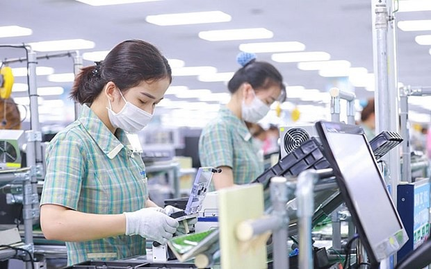 Empresas de Argentina buscan expandir sus negocios a Vietnam - ảnh 1