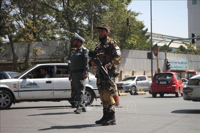 Afganistán pronto tendrá un ejército regular, afirma el Talibán  - ảnh 1