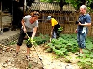 Ha Giang fomenta turismo vinculado a tarea crucial - ảnh 2