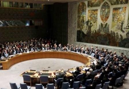 Consejo de Seguridad de la ONU elige nuevos miembros - ảnh 1