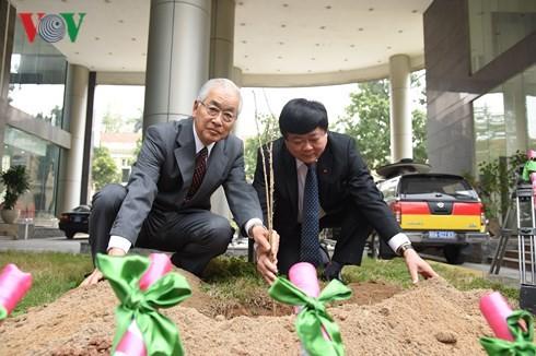 Kairinjuku University presents 100 sakura trees to VOV - ảnh 1