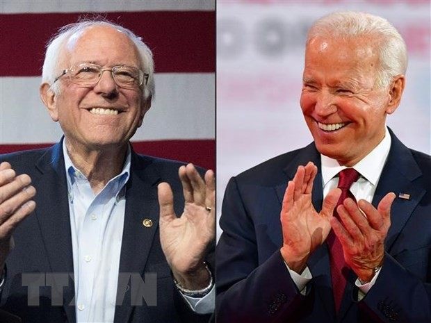 New York cancels Democratic presidential primary - ảnh 1