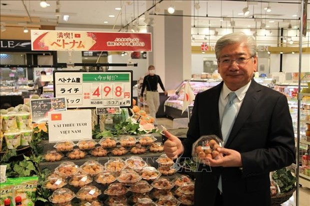 Vietnamese fresh lychee for sale for first time at Japanese supermarkets - ảnh 1