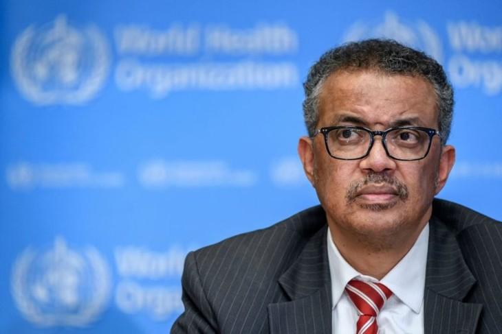 Coronavirus pandemic still accelerating: WHO chief - ảnh 1