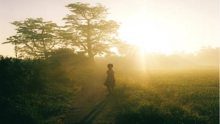 타이 빈 : 소박하고 평화로운 시골 마을 - ảnh 3