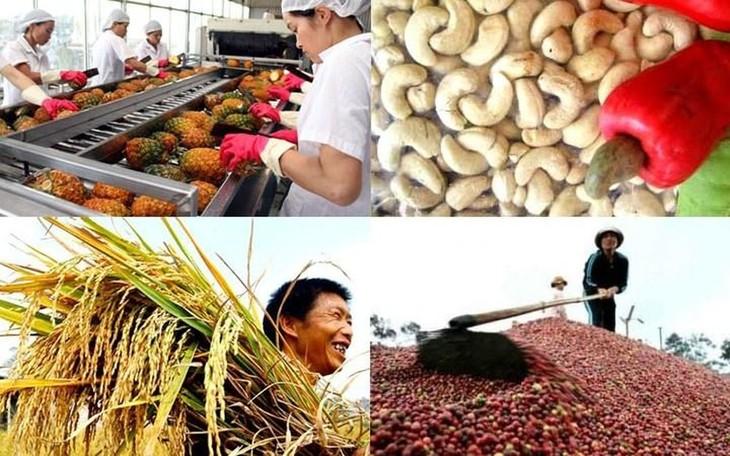 농민의 세계시장 참가 : 많은 기회와 도전 - ảnh 1