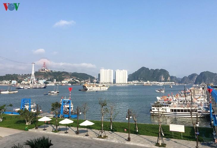 하롱시, 국민 건강 관리 서류 작성 - ảnh 1