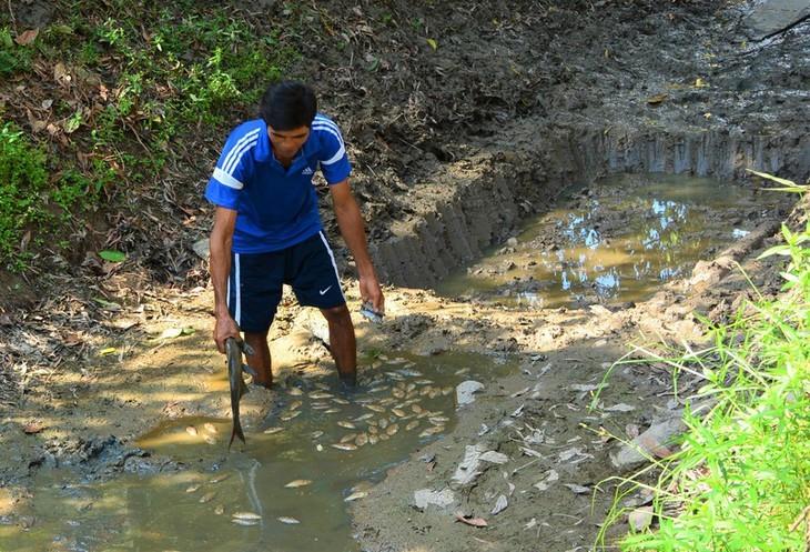 베트남 최남단 까마우 곶, 가뭄 심각  - ảnh 5