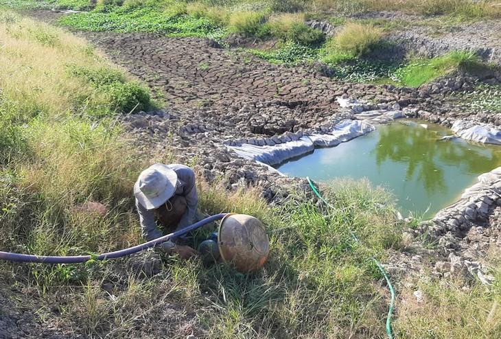 베트남 최남단 까마우 곶, 가뭄 심각  - ảnh 8