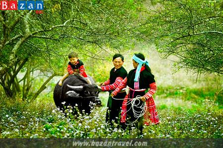 """선라 (Sơn La)성 자오 띠엔 (Dao tiền) 소수민족의 아기들을 위한 """"부어 판 뜨쥬 (búa phàn tziu)""""라는 전통 의례 - ảnh 1"""
