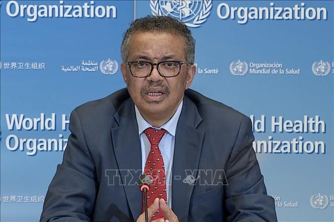 코로나19 : WHO, 전세계 재봉쇄 위기 경고 - ảnh 1