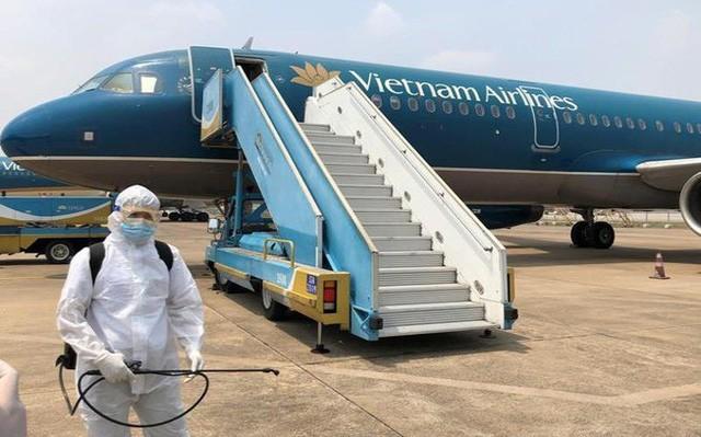 베트남 항공사 승무원과 미국발  귀국 베트남인 등 코로나19 확진자 4명 추가 발생 - ảnh 1
