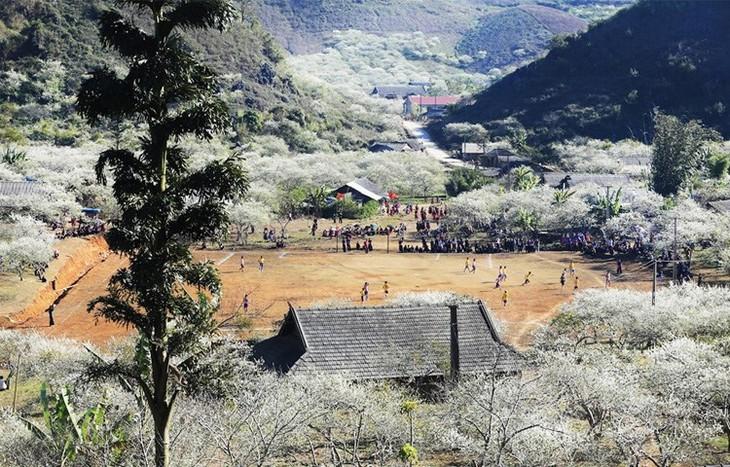 목쩌우 나까 자두 계곡 – 산악 중턱의 천국 - ảnh 1