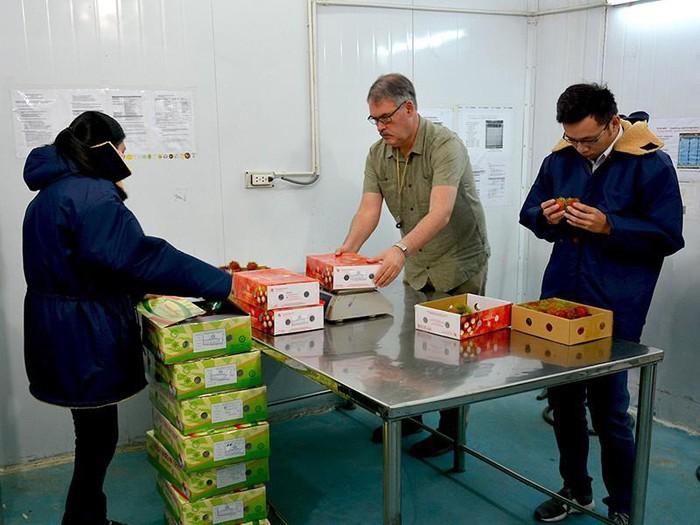 9월 2일 미국 과일 수출 검역 전문가, 베트남 방문 - ảnh 1
