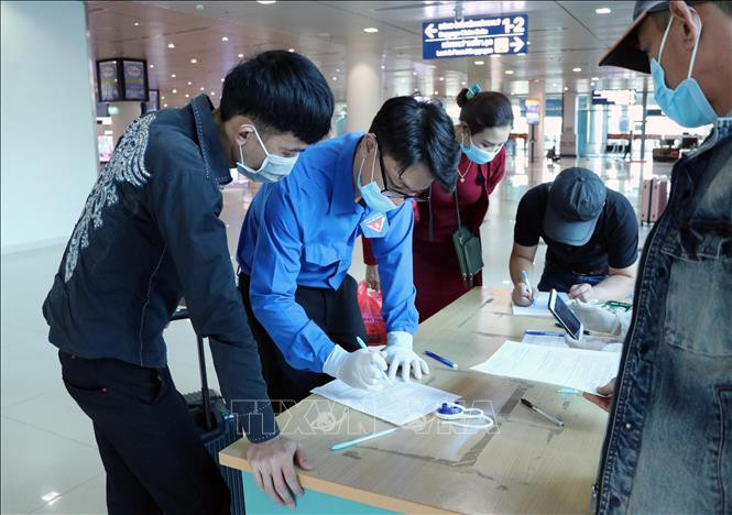 자원봉사청년단원, 하이퐁 공항 방역 지원 - ảnh 1