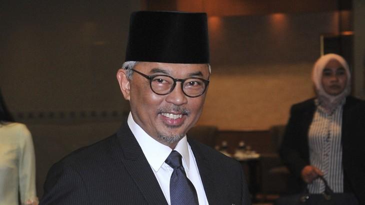 Malaisie : le sultan Abdullah couronné nouveau roi  - ảnh 1