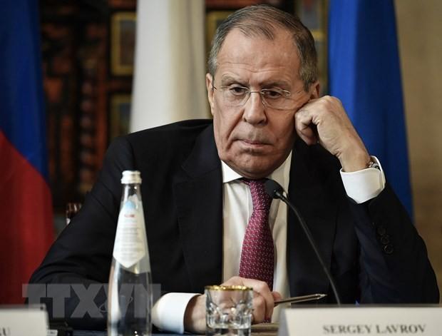 Syrie : la Turquie menace d'intervenir si l'offensive du régime syrien à Idleb ne cesse pas - ảnh 1