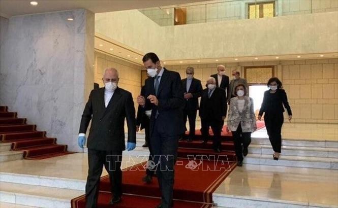 Virus: Damas et Téhéran dénoncent le maintien des sanctions américaines - ảnh 1