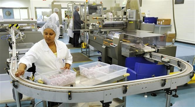 Australie: les essais prometteurs d'un prototype de vaccin contre le Covid-19 - ảnh 1