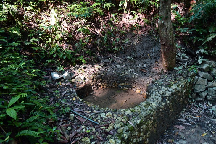 La forêt de Trân Hung Dao, berceau de l'Armée populaire du Vietnam - ảnh 3