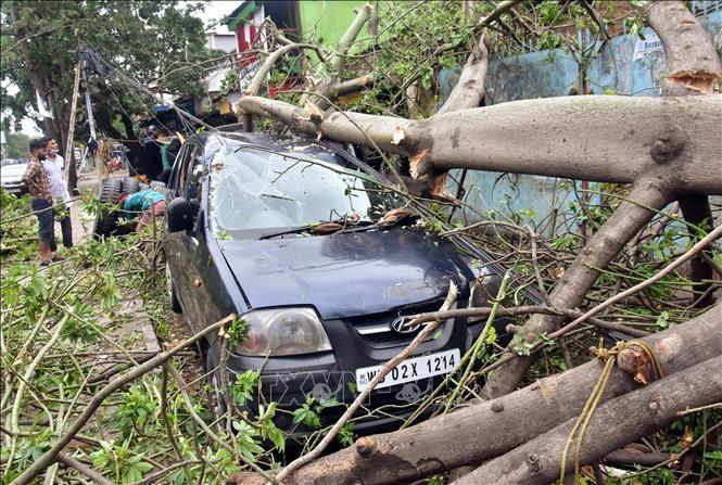Le bilan du cyclone Amphan dépasse les 100 morts en Inde et au Bangladesh - ảnh 1