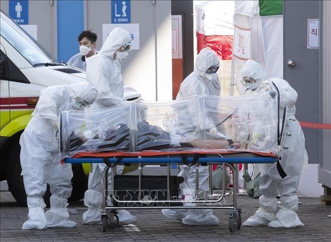 Coronavirus: le point sur la pandémie dans le monde - ảnh 1