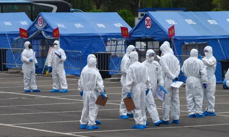 Coronavirus: 150 000 nouveaux cas dans le monde en une journée, un record depuis le début de la pandémie - ảnh 1