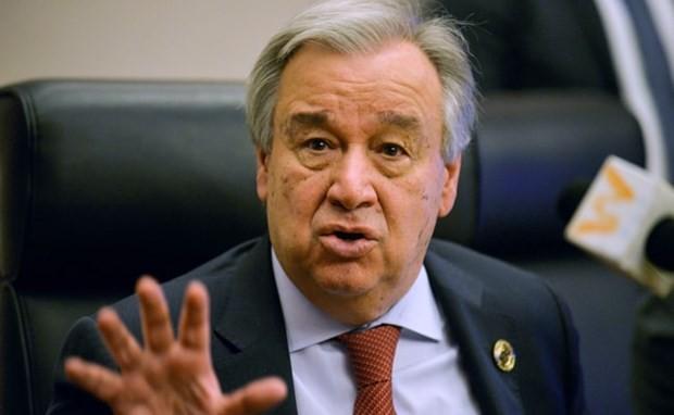 L'ONU appelle le monde à s'unir dans la lutte contre le terrorisme - ảnh 1